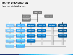 Matrix organization PPT slide 4
