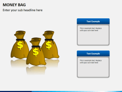 Money bag PPT slide 5