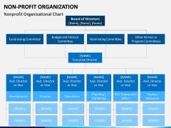 Non-Profit Organization PPT slide 12