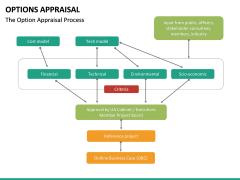 Options Appraisal PPT slide 10