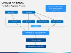 Options Appraisal PPT slide 4