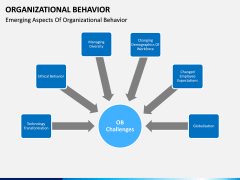 Organizational behavior PPT slide 14