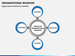 Organizational behavior PPT slide 6