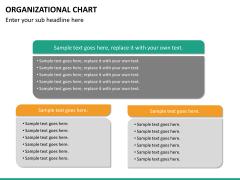 ORG chart PPT slide 24