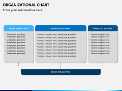ORG chart PPT slide 13