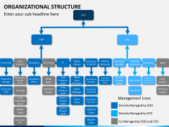 Organizational structure PPT slide 17