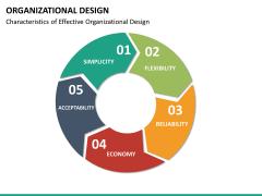 organizational design PPT slide 24
