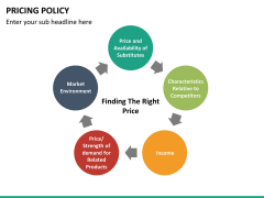 Pricing policy PPT slide 47