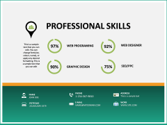 Professional Resume PPT slide 20