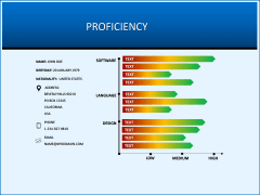 Professional Resume PPT slide 8