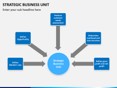 Strategic business unit PPT slide 12