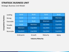 Strategic business unit PPT slide 14