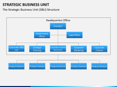 Strategic business unit PPT slide 3