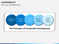Sustainability PPT slide 8