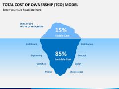 TCO model PPT slide 2