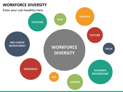 Workforce diversity PPT slide 12
