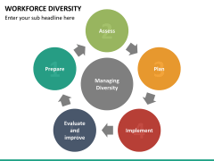 Workforce diversity PPT slide 14