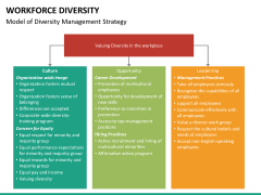 Workforce diversity PPT slide 17