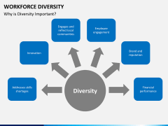Workforce diversity PPT slide 11
