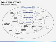Workforce diversity PPT slide 7