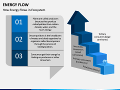 Energy Flow PPT Slide 2