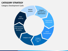 Category Strategy PPT Slide 10