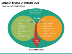 Synergy Model of Patient Care PPT Slide 6