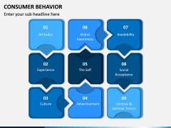 Consumer Behavior PPT Slide 14