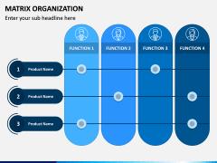Matrix Organization PPT Slide 10