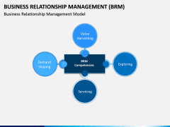 Business Relationship Management (BRM) PPT Slide 10