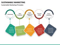 Sustainable Marketing PPT Slide 12