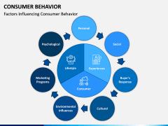 Consumer Behavior PPT Slide 4