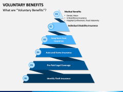 Voluntary Benefits PPT Slide 2