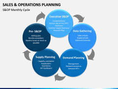 Sales and Operations Planning PPT Slide 13