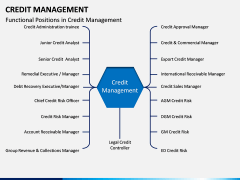 Credit Management PPT slide 2