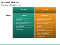 Internal Analysis PPT slide 20