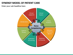 Synergy Model of Patient Care PPT Slide 7