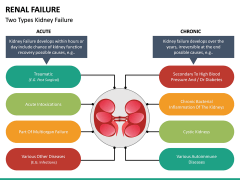 Renal Failure PPT Slide 17