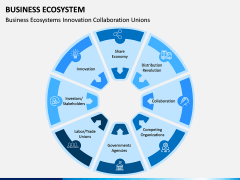 Business Ecosystem PPT Slide 11