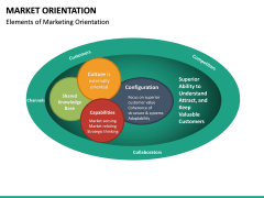Market Orientation PPT slide 17