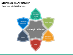 Strategic Relationship PPT Slide 16