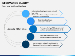 Information Quality PPT Slide 8