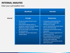 Internal Analysis PPT slide 8