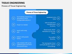 Tissue Engineering PPT Slide 9