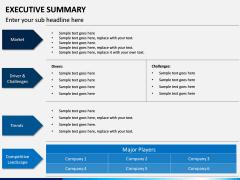 Executive Summary PPT Slide 15
