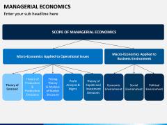 Managerial Economics PPT Slide 5