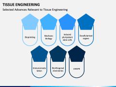 Tissue Engineering PPT Slide 13