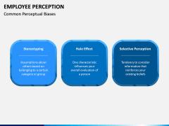 Employee Perception PPT Slide 10