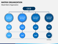 Matrix Organization PPT Slide 9