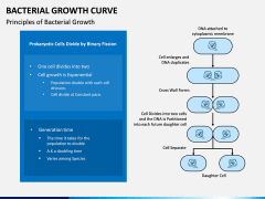 Bacterial Growth Curve PPT Slide 2